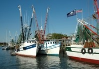 Shem Creek Shrimping Boats_200.jpg